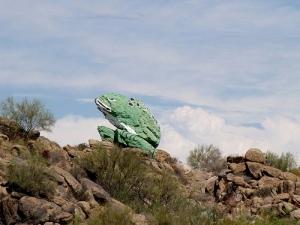 Yarnell frog