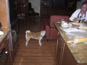Kiko supervising