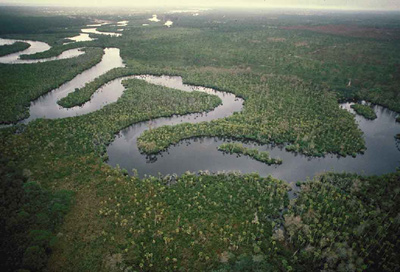 loxahatchee river aerial view