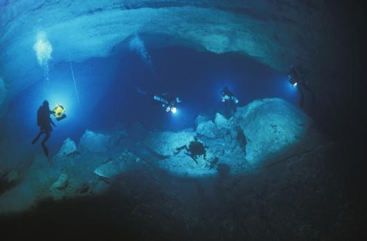 divers in caves wakulla springs