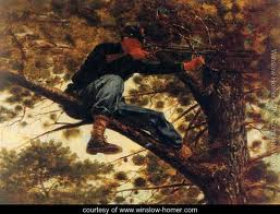 Sharpshooter by Winslow Homer
