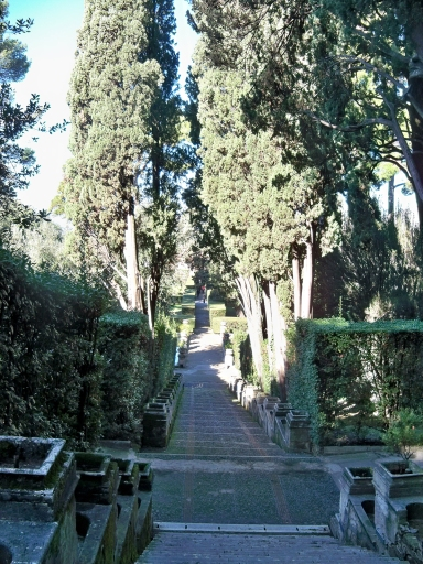 Looking down into the garden