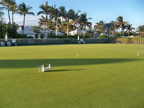 Lawns being prepared