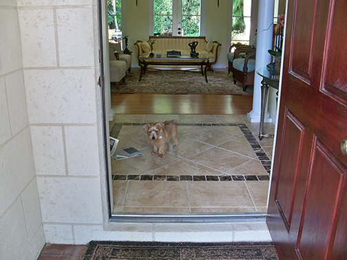 Teddy at the Door