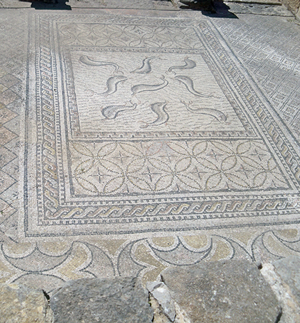 Mosaic of the Fishes