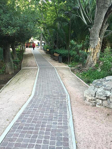 a-walk-through-the-park