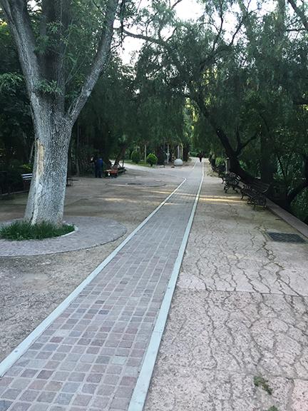 beautiful-park