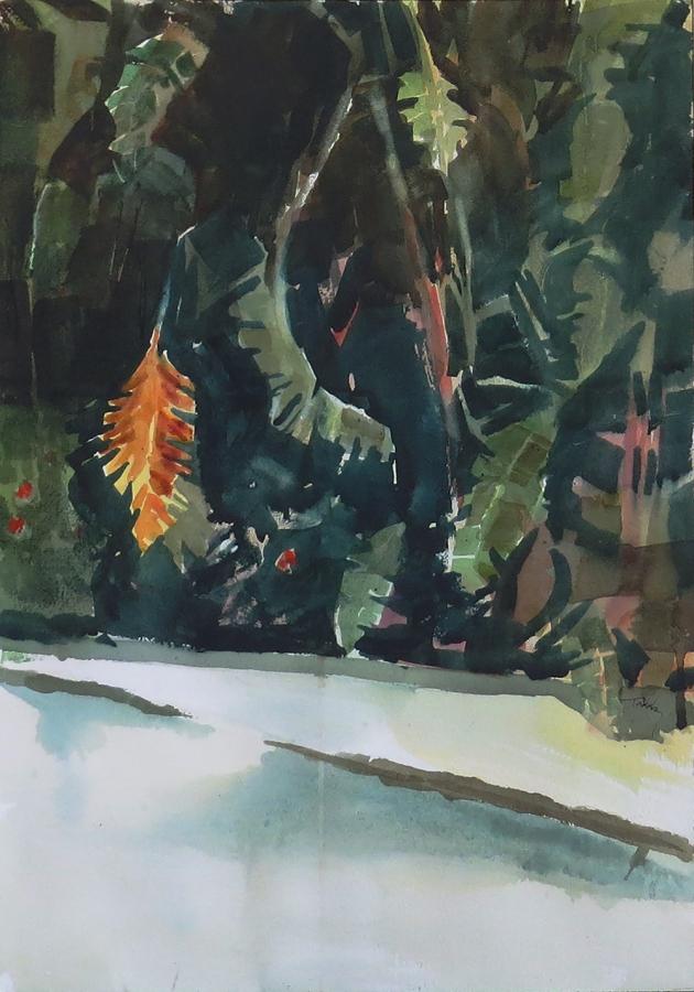 Tropical Ballet